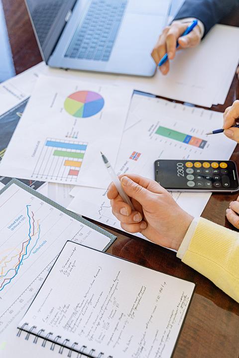 nepsio-conseil-partenaire-de-vos-projets-cas-clients-standard